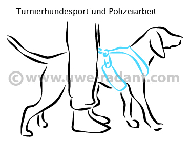 safety_turnierhundesport